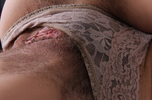 fri erotik håriga fittor